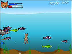 Игра Fish Catcher